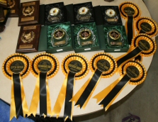 LaShadas 2009 SBE Trophies and Rosettes
