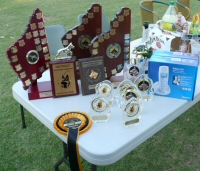 Some of the Trophies and Prizes from the Weekend